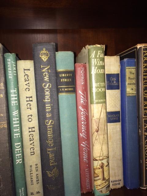 quinda-shelf